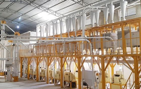 Sell Compact Structure Flour Milling Plant