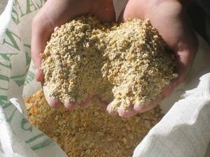 Wholesale organic meals: Chicken Feed Organic Meal