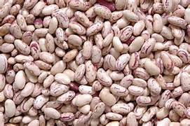 Wholesale Kidney Beans: Pulses
