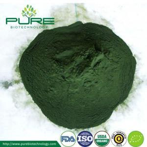 Wholesale organic spirulina powder: Spirulina Powder with 60%-65% Protein