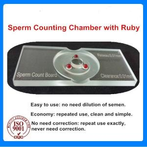 Wholesale medicine stone: Sperm Counting Chamber with Ruby