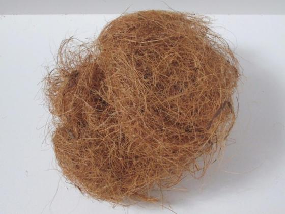 Sell Coconut Fibre