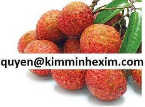 Wholesale dried lychee: Lychee Fruit