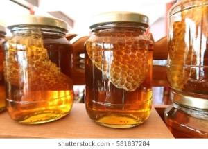 Wholesale bee honey: High Quality Pure Natural Organic Bee Honey