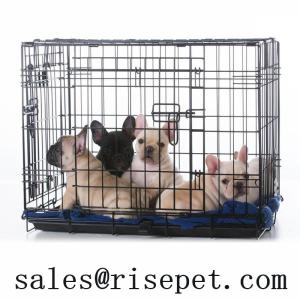 Wholesale exercise pen for dogs: Wire Dog Crates