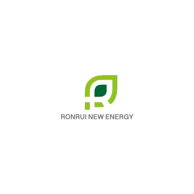 Guangdong Ronrui New Energy Technology Limited