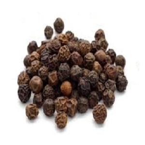 Wholesale oil expeller: Castor Seeds