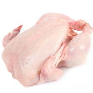 Wholesale griller: Halal Frozen Chicken Griller