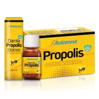 Liquid Propolis Extract Apiterapy Bee Products 5