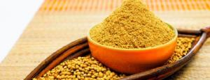 Wholesale coriander: Coriander Powder