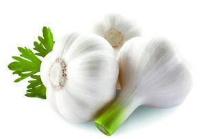 Wholesale α arbutin good price: Garlic P.E. Extract Allicin Powder