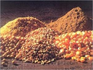 Wholesale animal fodder: Animal and Poultry Feeds