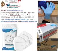 3M N95 Mask FDA-Approved Disposable Nitrile Gloves and 3-Ply Mask.