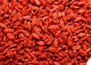 Wholesale orange juice concentrate powder: Ningxia Super Food  Organic Dried Goji Berry