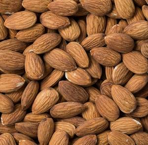 Wholesale almond: Raw Natural Almond Nuts