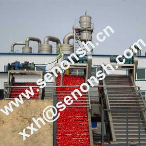 Wholesale juice sterilizer: Tomato Paste Production Line Turnkey Project
