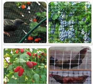 Wholesale hdpe extruded mesh: Nylon Shade Mesh Bird Netting