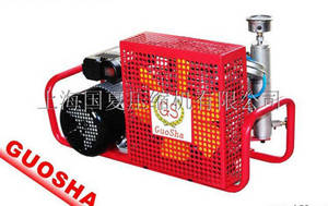 Wholesale cng for vehicle: GSX100 Type Fire Breathing Air Compressor