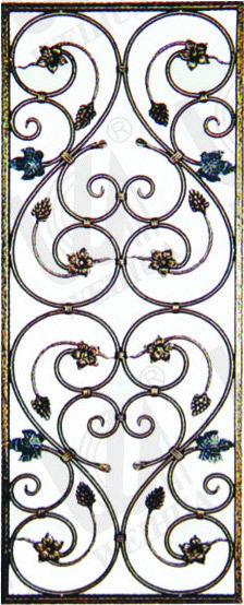 Wrought Iron Door Grills Image