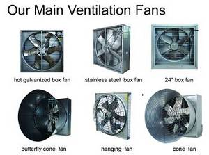 Wholesale broiler cage: Large 53 Inch Ventilation Fan for Broiler Cage House