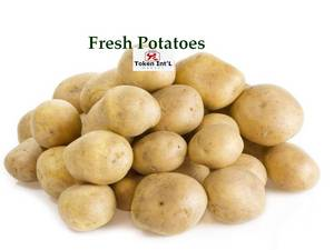 Wholesale potato from china: Fresh Potatoes for Sell