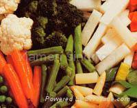 Wholesale frozen bamboo shoot strips: IQF Vegetables ,Frozen Vegetables
