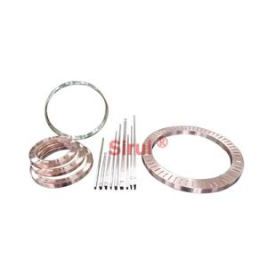 Wholesale Motor Parts: Short Circuit Ring/Bar/ Shrink Ring Used in High Traction Motor