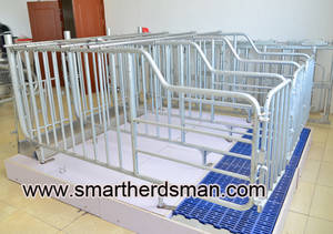 Wholesale Other Animal Husbandry Equipment: Gestation Stall or Individual Stall for Pigs