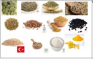 Wholesale spices: Spices& Herbs