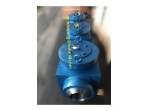 Wholesale hydraulic valve: Hydraulic Test Block Valves