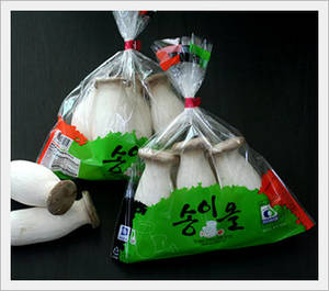 Wholesale king oyster mushroom eryngii: King Oyster Mushrooms(Also Known As Eryngii)