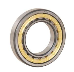 Wholesale Roller Bearings: Single Row Cylindrical Roller Bearing with Competitive Price