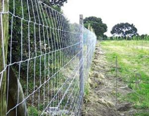 Wholesale Fencing & Edging: Field Fence