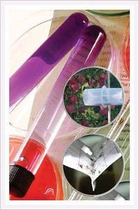 Wholesale insect trap: Insect Pheromone Lure and Trap
