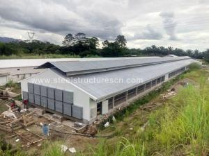Wholesale poultry farm: Customized Design Poultry Farm House Layer Chicken House