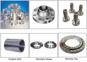 Wholesale flange: Flange & Forged Ring