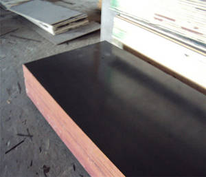Wholesale plywood: Two Times Press Black Film Faced Plywood