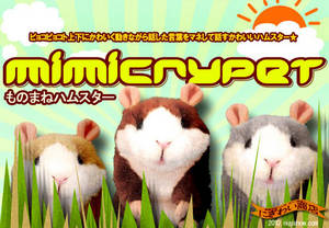 Wholesale novelty toys: Mimicrypet  Recording Hamster