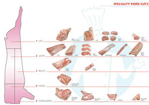Wholesale back: Pork Front Feet,Frozen Pork Stomachs, Frozen Pork Back Bone