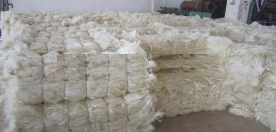 Sell 100% NATURAL SISAL FIBRES FROM KENYA
