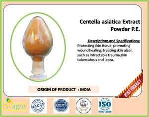 Wholesale gotu kola powder: Sell Centella Asiatica Extract Powder in Asiaticoside 10%~90% HPLC