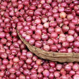 Wholesale red onion: Fresh Onion (Red Onions, Yellow Onions, Pink Onions
