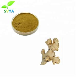 Wholesale Plant Extract: 100% Natural Factory Supply Gingerols 10% 15% 20% Ginger Extract, Ginger Root Ectract