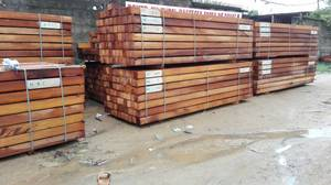 Wholesale Timber: Iroko / Teak Wood, Pachyloba, Sapele, Tali, Azobe and Padauk