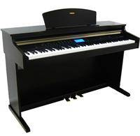 Wholesale digital pianos: Digital Piano with Much Function TG-DP3000
