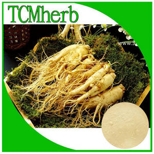 Wholesale korean red ginseng extract products: Panax Ginseng Root Extract