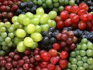 Wholesale health: Fresh Grapes