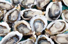 Sell Coffin Bay King Oysters