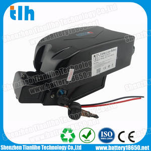 Wholesale air cargo: Small Frog Type Electric Bike Li-ion Battery 48V 10Ah