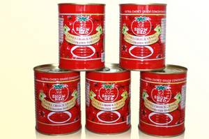 Wholesale Ketchup: Canned Tomato Paste